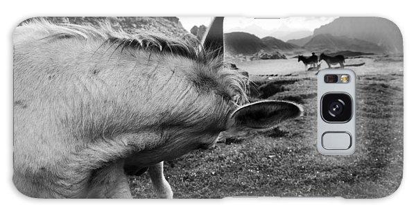 Donkeys Galaxy Case by Yuri Santin