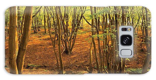 Donyland Woods Galaxy Case by David Davies