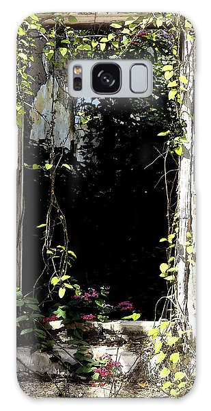 Doorway Delights Galaxy Case by Anne Mott