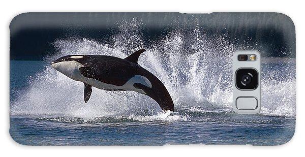 Double Breaching Orcas Bainbridge Galaxy Case