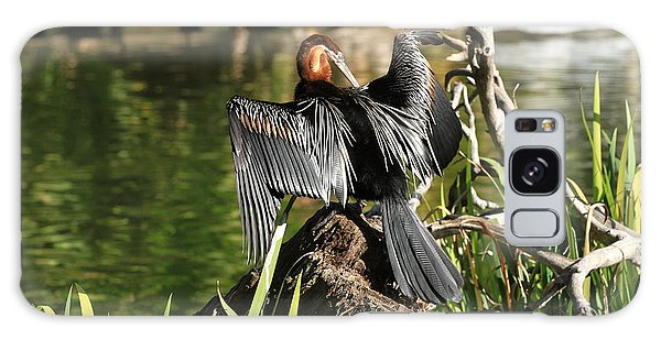 Double-crested Cormorant Galaxy Case by Edward R Wisell