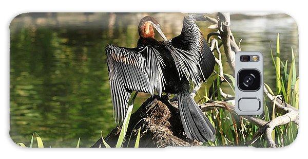 Double-crested Cormorant Galaxy Case