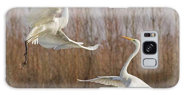 Egret Galaxy Case - Double Dance - 2 by Cheng Chang