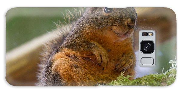 Douglas Squirrel Galaxy Case