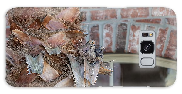 Dove Nest 2 Galaxy Case by Gregory Daley  PPSA