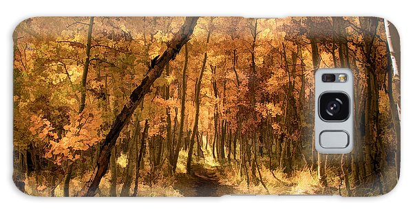 Foliage Galaxy Case - Down The Golden Path by Donna Kennedy