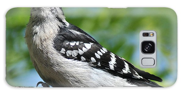 Downy Woodpecker 302 Galaxy Case