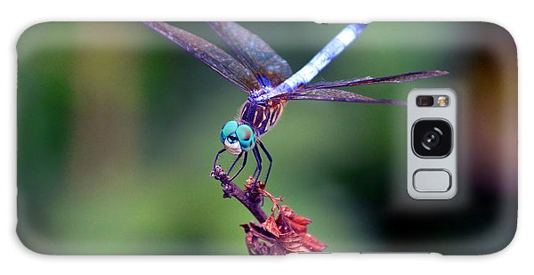 Dragonfly 2 Galaxy Case