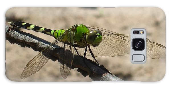 Dragonfly Eastern Pondhawk Galaxy Case
