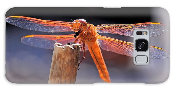 Dragonfly Eating An Insect Galaxy Case