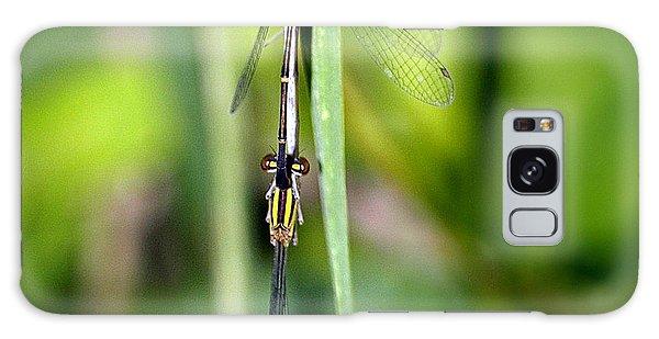 Dragonfly Landing Galaxy Case