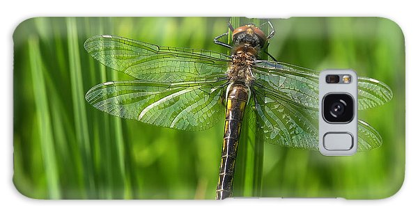 Dragonfly On Grass Galaxy Case