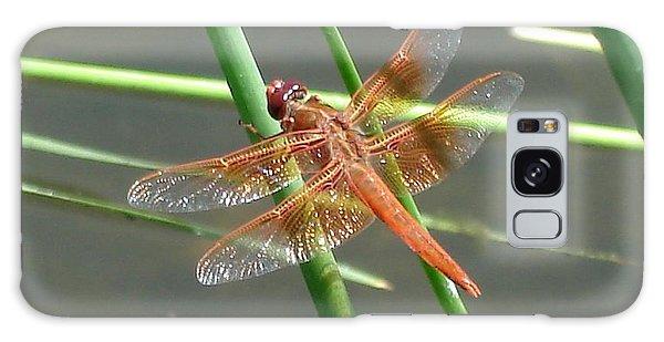 Dragonfly Orange Galaxy Case