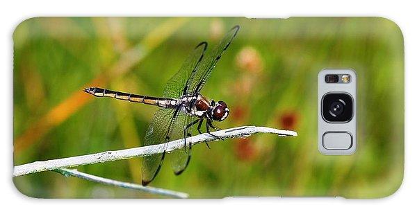 Dragonfly Perch Galaxy Case