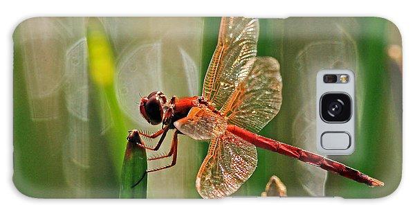 Dragonfly Profile Galaxy Case