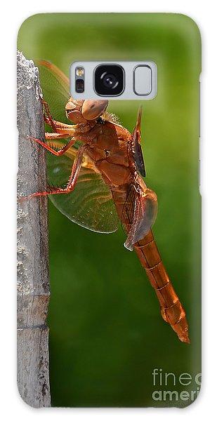 Dragonfly Resting Galaxy Case