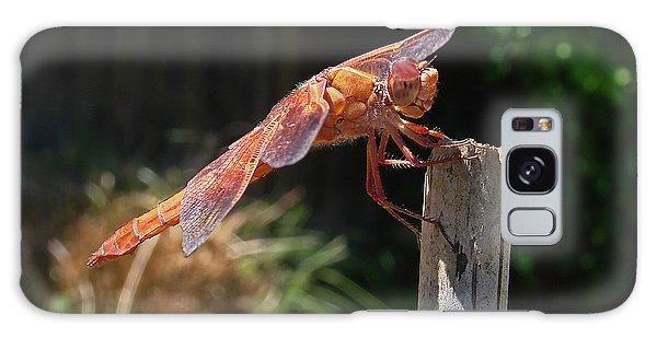 Dragonfly Stretching Galaxy Case