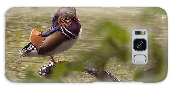 Drake Mandarin Duck Galaxy Case