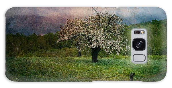 Dream Of Spring Galaxy Case