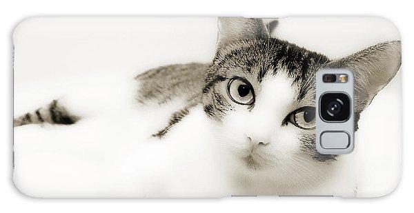 Dreamy Cat 2 Galaxy Case