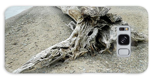 Driftwood At Lake Erie Galaxy Case by Kathy Barney