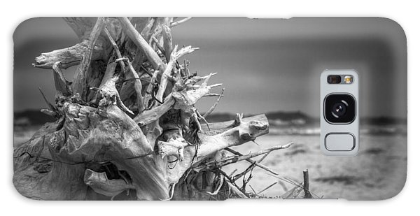Driftwood At Race Point Galaxy Case