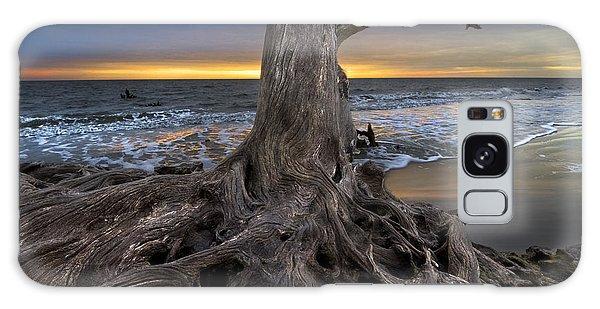 Driftwood On Jekyll Island Galaxy Case