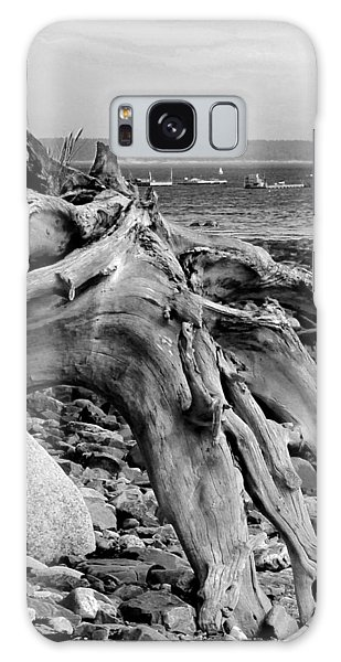 Driftwood On Rocky Beach Galaxy Case