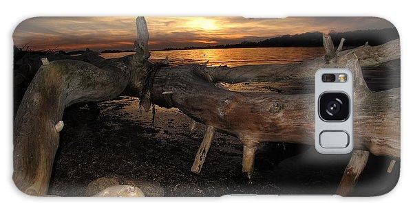 Driftwood Sunset Galaxy Case