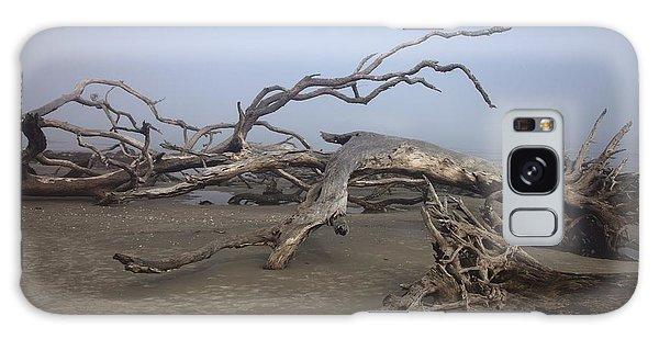 Driftwood Trees On Jekyll Island Galaxy Case