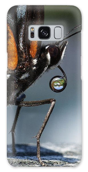 Drinking Dew Drops 6 Galaxy Case by David Lester