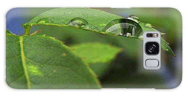 Drop Leaf Galaxy Case