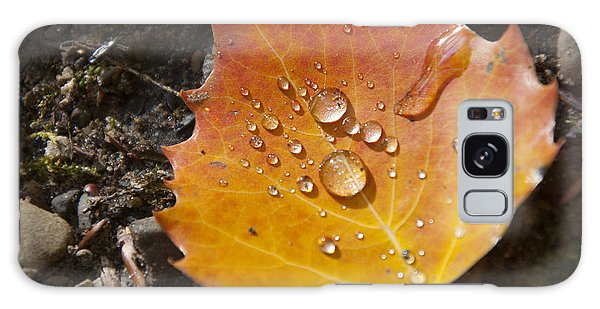 Droplets In Autumn Leaf Galaxy Case