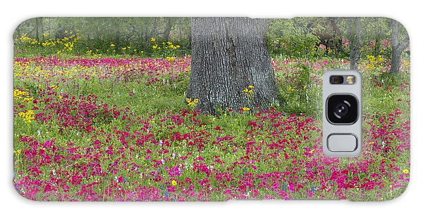 Drummonds Phlox And Crown Tickweed Central Texas Galaxy Case
