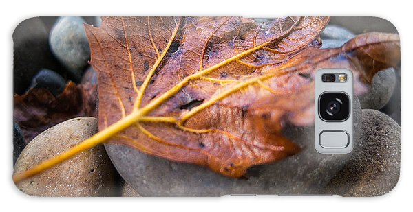Drying Leaf Galaxy Case by Mike Lee