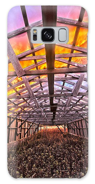 Duck Farm Skeleton Skylight Galaxy Case