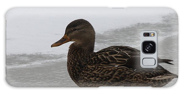 Duck On Ice Galaxy Case by John Telfer