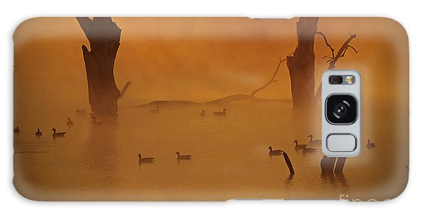 Duck Pond Galaxy Case