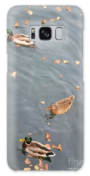 Ducks And Autumn Leaves Galaxy Case by Kathleen Pio