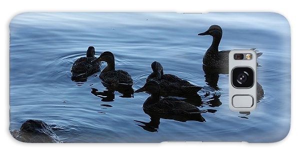 Ducks At Dusk Galaxy Case