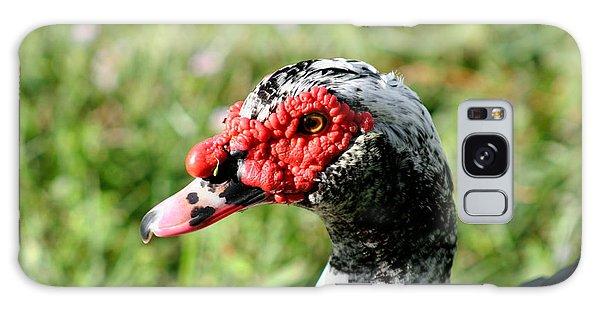 Duck's Eye Galaxy Case