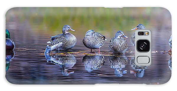 Duck Galaxy Case - Ducks In A Row by Larry Marshall