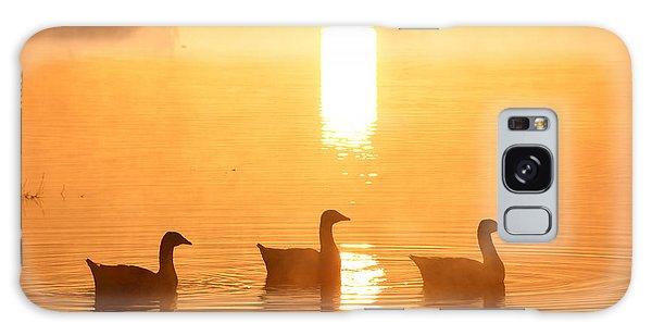 Ducks On A Foggy Lake At Sunrise Galaxy Case