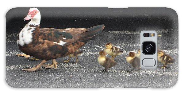 Ducks Walking Galaxy Case by Val Oconnor