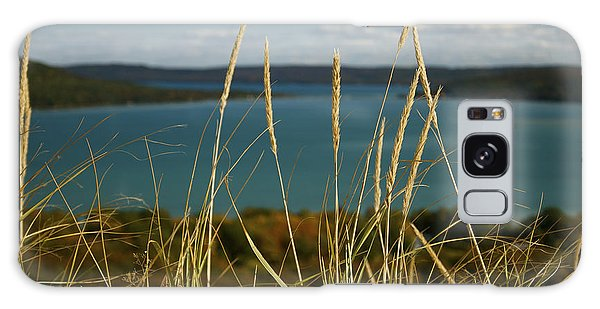 Dune Grass On A Sunny Fall Day Galaxy Case
