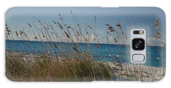 Dune Grasses Galaxy Case by Judy Wolinsky