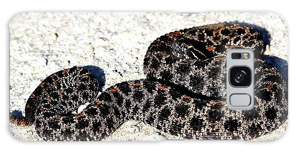 Dusky Pygmy Rattlesnake Galaxy Case