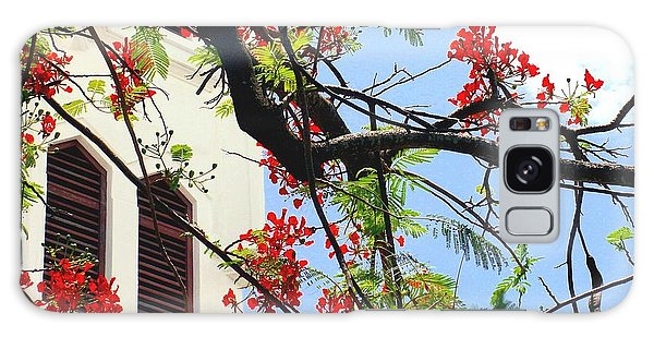 Duval Street Flame Tree Galaxy Case by Valerie Reeves