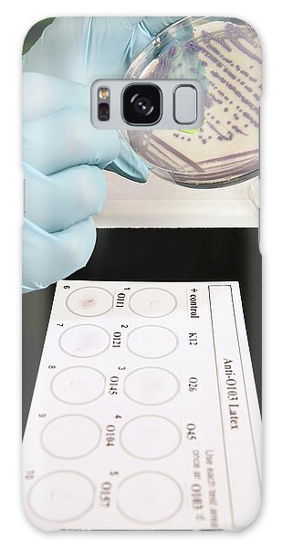 Escherichia Coli Galaxy Case - E. Coli Stec Bacterial Test by Peggy Greb/us Department Of Agriculture