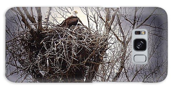 Eagle At Home Galaxy Case by Kae Cheatham